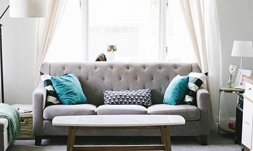 homely living room with couch